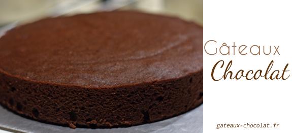 Recette Gâteau Au Chocolat Rapide Avec Le Multicuiseur Cookeo